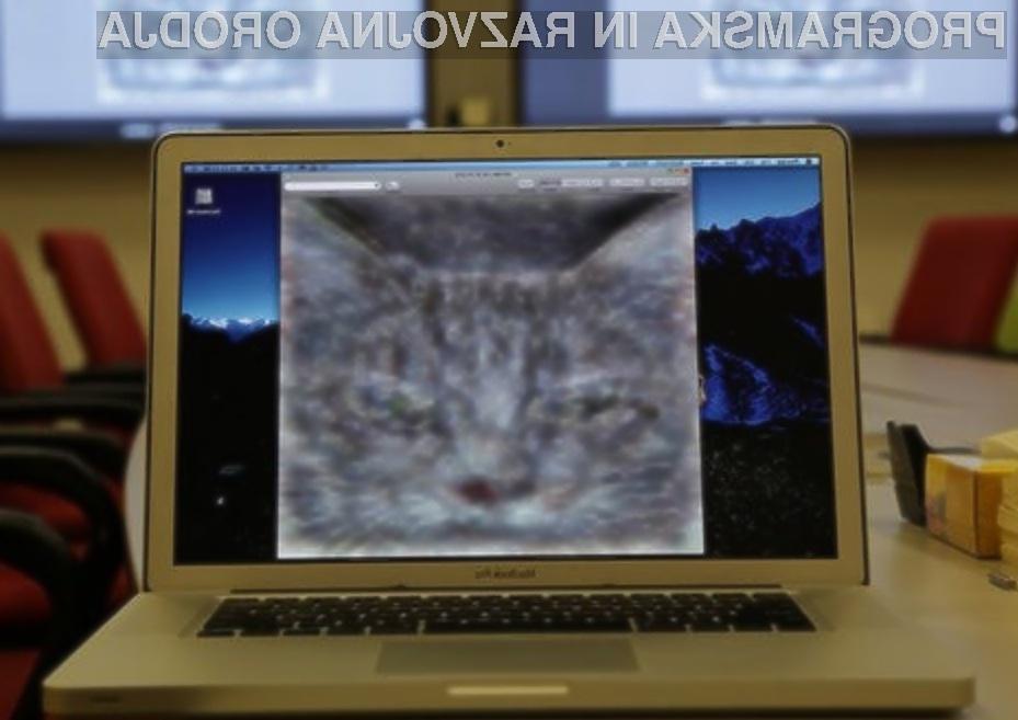 Googlovi umetni človeški možgani so se izkazali za nadvse učinkovite pri iskanju mačk na slikah.