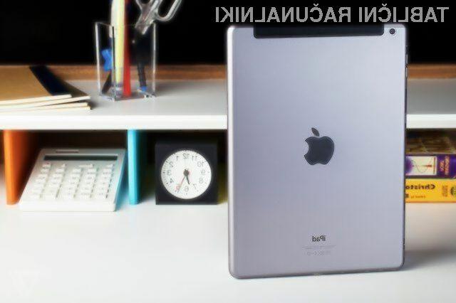 Večja tablica Apple iPad naj bi luč sveta ugledala najkasneje do konca naslednjega poletja.