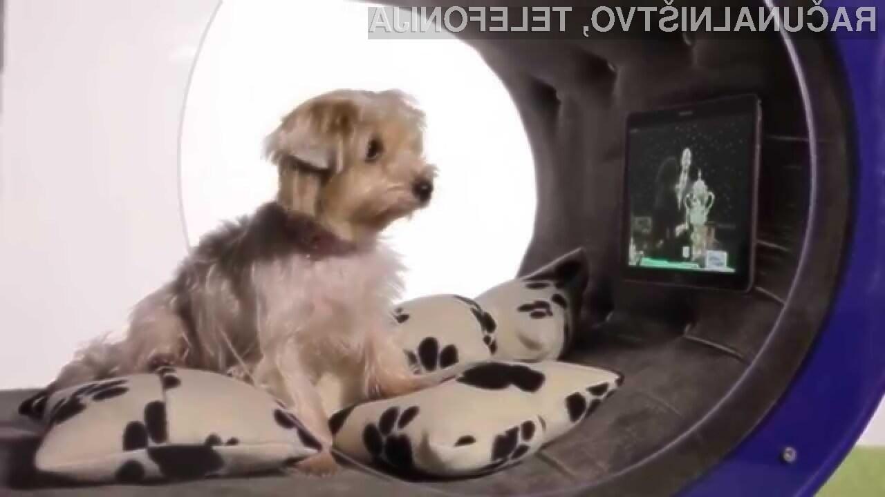 Vaš pes bi bil zagotovo vesel visokotehnološke pasje utice Dream Doghouse.