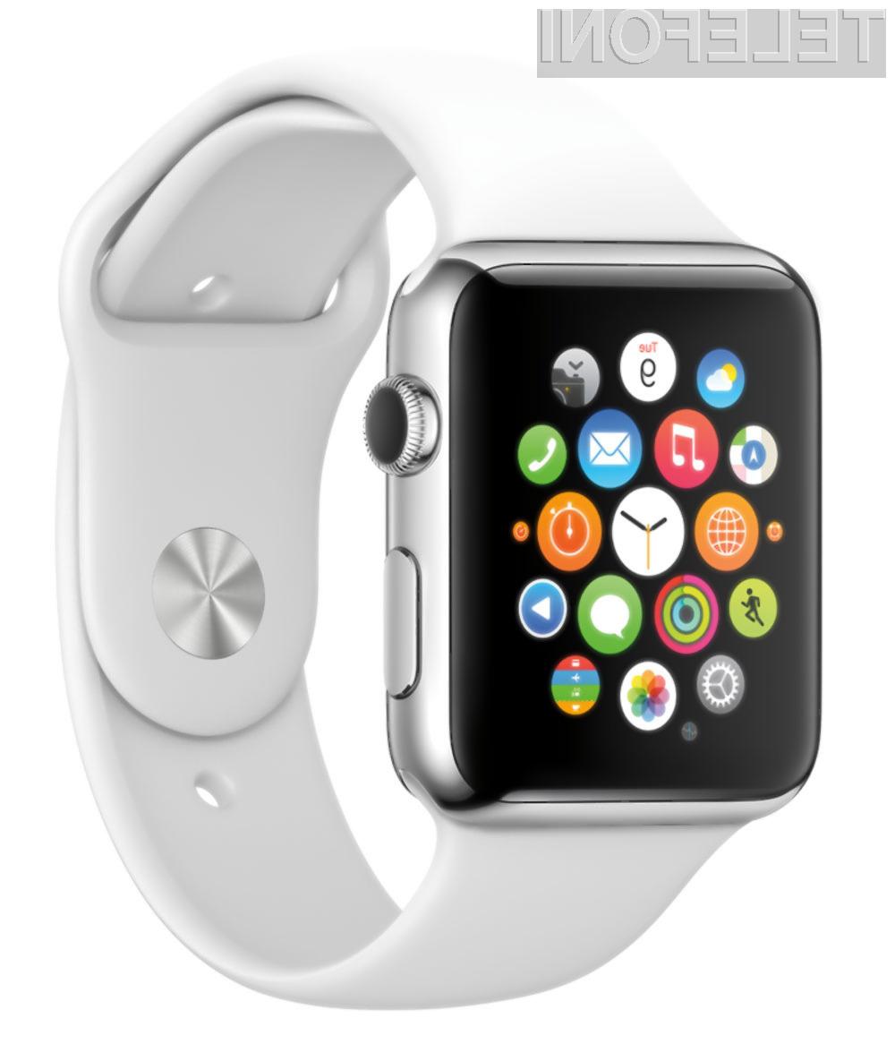 Izmenljiva baterija bo kot nalašč za podaljšanje avtonomije delovanja pametne ročne ure Watch.