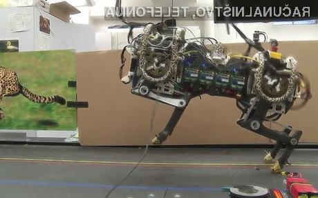 Robot Cheetah lahko sedaj še preskakuje ovire!