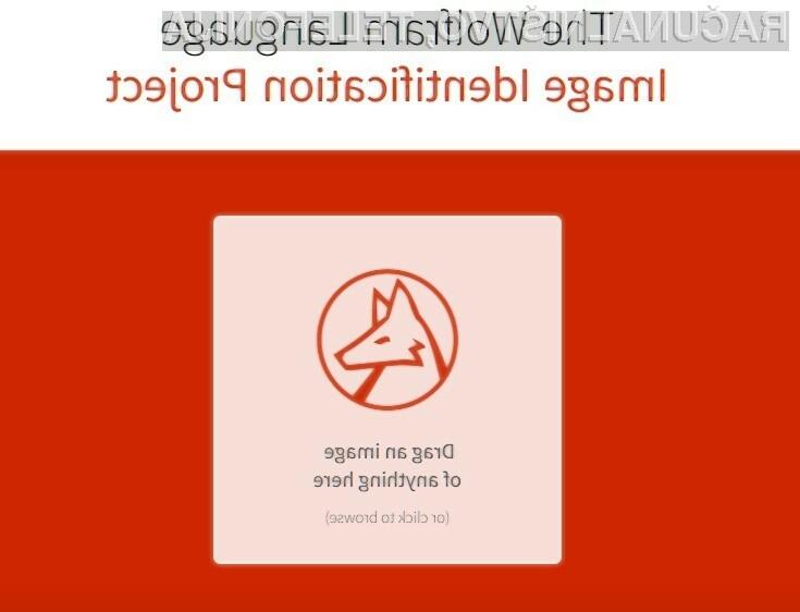 Spletno orodje Image Identification Project nas bo zlahka prevzelo.