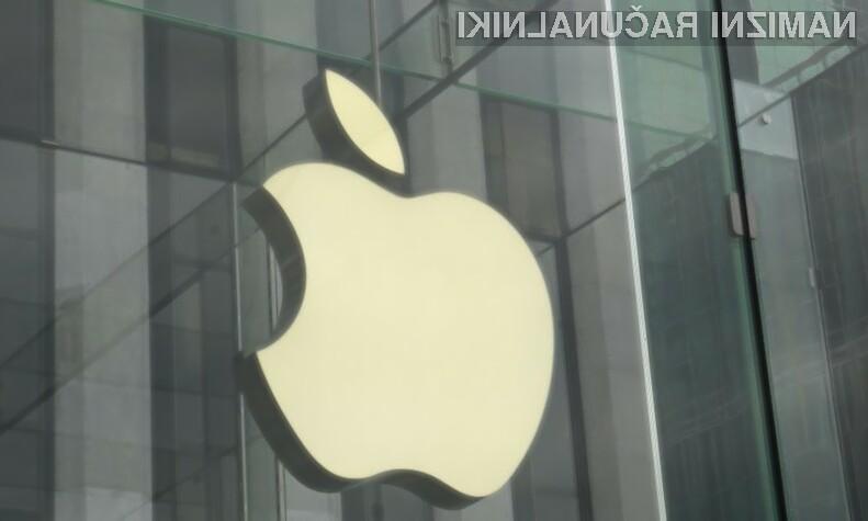Apple naj bi lasten spletni iskalnik iSearch javnosti predstavil že v drugi polovici letošnjega leta.