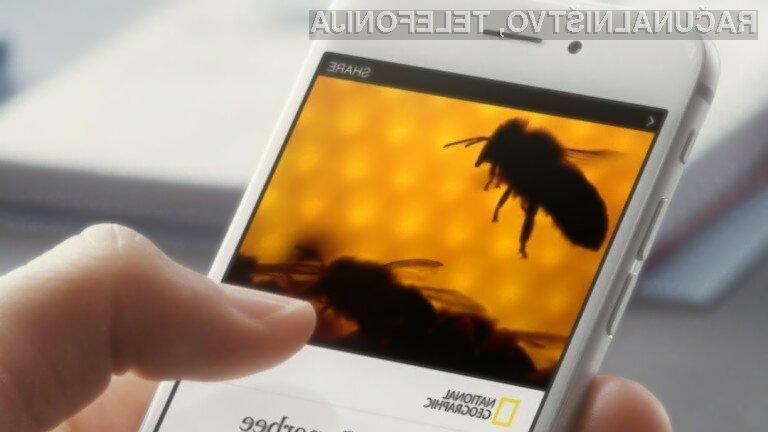 Novičarski portal Facebook Instant Articles se odlično prilega Applovim mobilnim napravam!