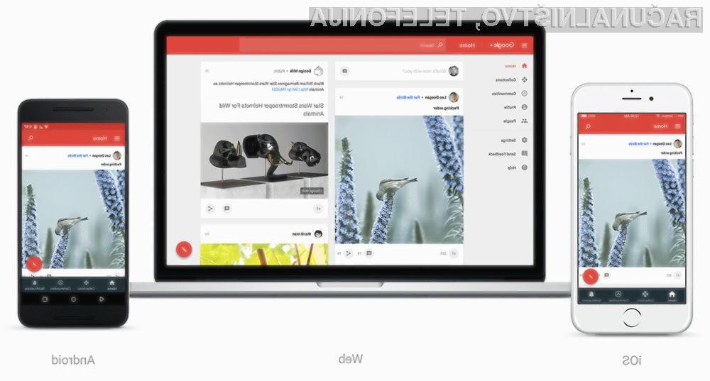 Prenovljeno družbeno omrežje Google+ je na las podobno Instagramu.