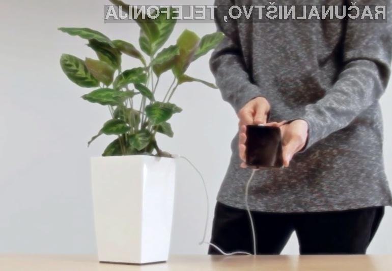 Rastlinski ekološki polnilec Bioo lahko baterijo povsem napolni od dvakrat do trikrat v 24 urah.