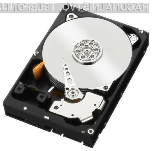 Prvi trdi diski kapacitete 40 TB naj bi bili naprodaj okoli leta 2025.