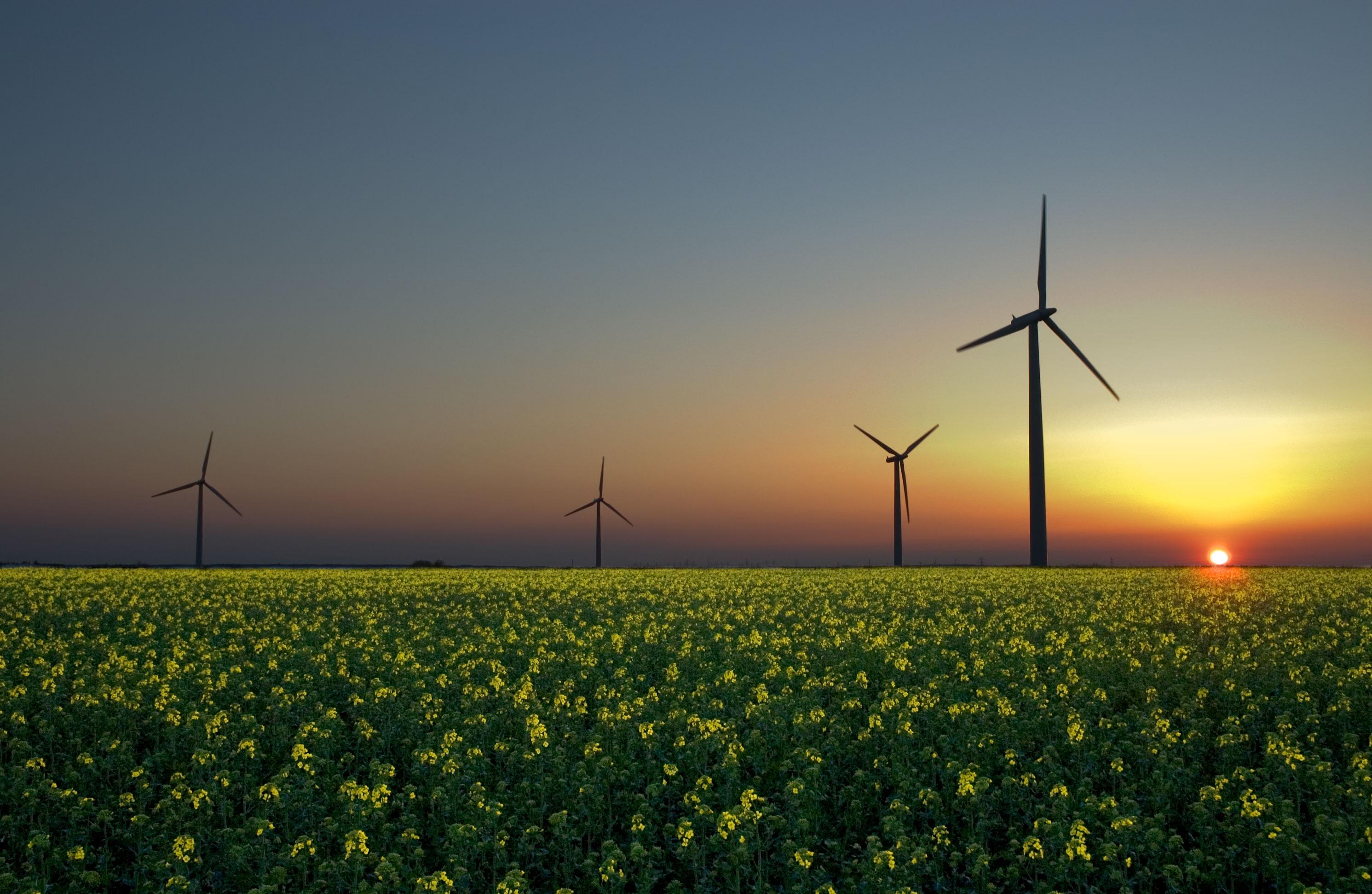 Bi lahko napajali celoten svet s sončno energijo?