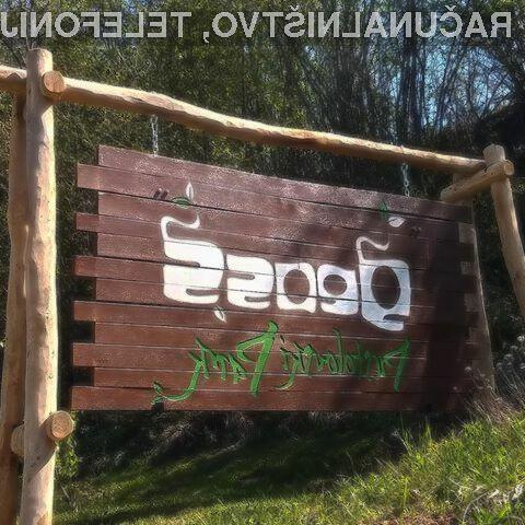 Družinska vstopnica (2 + 2) za Pustolovski park GEOSS za SAMO 40,00 €!